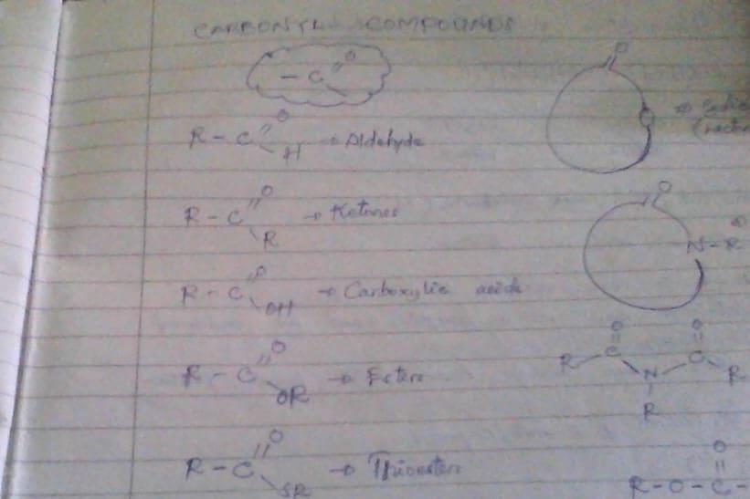 Portfolio for Translator, chemistry tutor