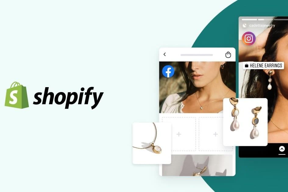 Portfolio for Shopify Website Development Expert