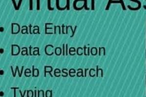 Portfolio for Data Science, Data Entry expert