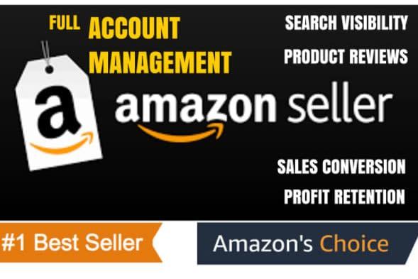 Portfolio for Amazon virtual assistant