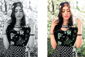 Portfolio for Colorize Black and White Photos