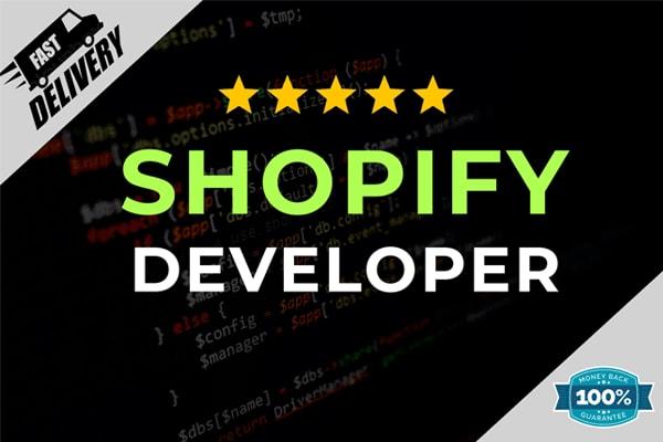 Portfolio for Design or develop shopify store