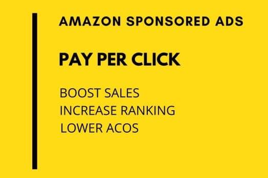 Portfolio for Amazon PPC campaign Management