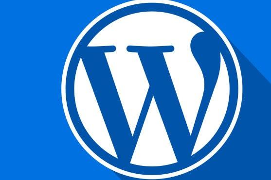 Portfolio for Backend Web Development, API, Wordpress