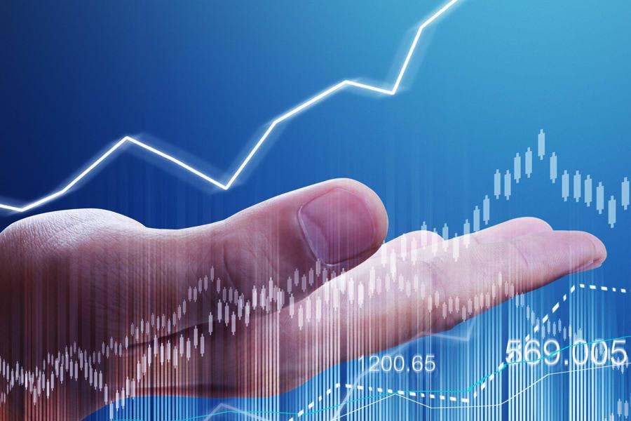 Portfolio for Financial Management