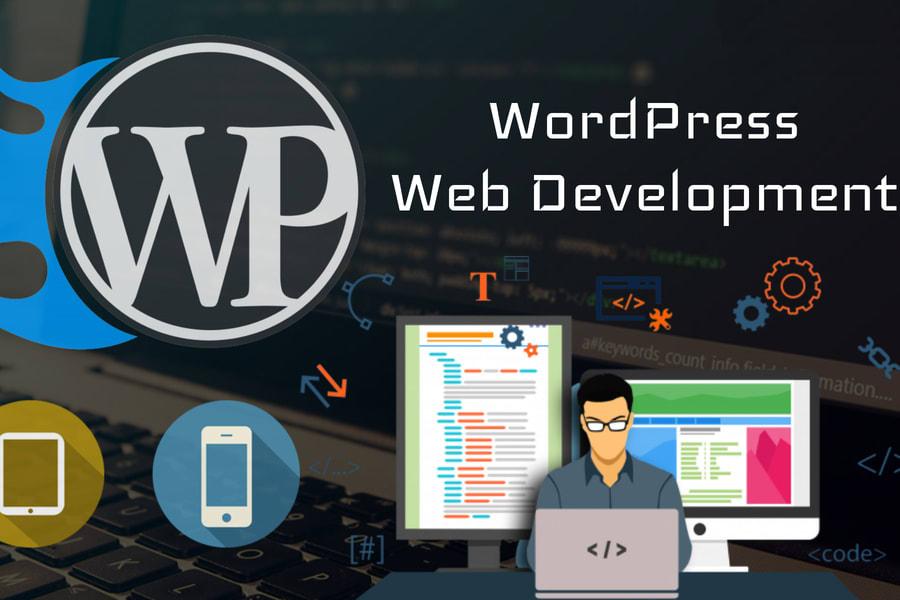 Portfolio for Wordpress Developement