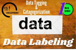 Portfolio for Data labeling, data tagging/data scraper