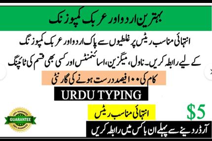 Portfolio for I will do Urdu typing in ms word