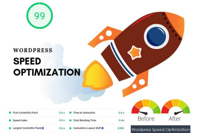 Portfolio for WordPress Speed Optimization