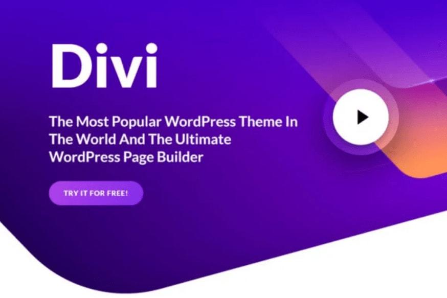 Portfolio for DIVI THEME Setup & Install for WordPress