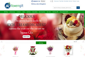 Portfolio for Magento Website Development