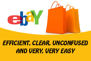Portfolio for eBay Store Management