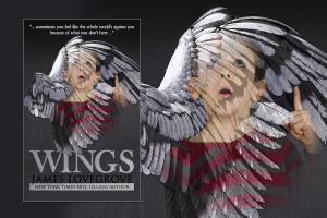 Portfolio for Book Cover Art & Design