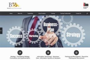 Portfolio for Wordpress websites