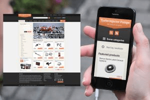 Portfolio for Website - Advanced