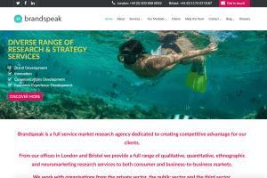 Portfolio for Online Reputation Management (ORM)