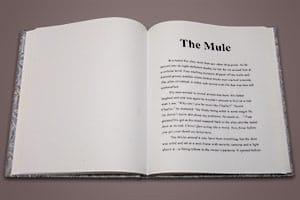 Portfolio for Copy Editing