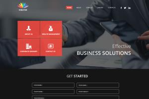 Portfolio for CMS based Responsive Websites