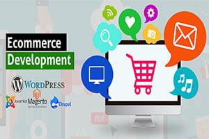 Portfolio for Wordpress Ecommerce Website Development