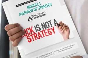 Portfolio for Workbook or Presentation layout design