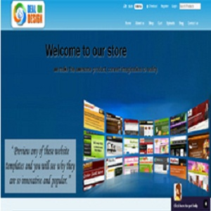 Portfolio for Web Design Services