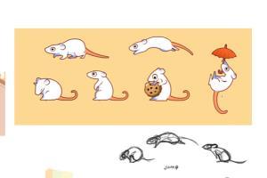 Portfolio for 2D Game Animation