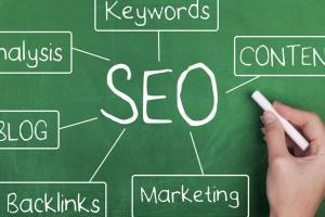 Portfolio for Expert Web Content Writing Services