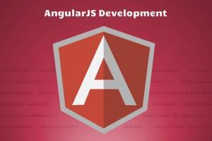 Portfolio for Angular JS Development