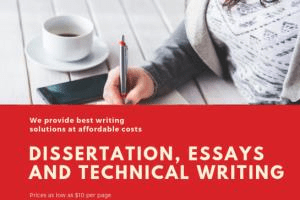 Portfolio for Academic writing & Technical Writing