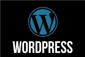 Portfolio for Wordpress Design