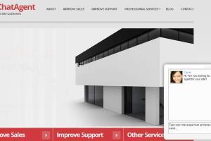 Portfolio for Sales & Customer Services