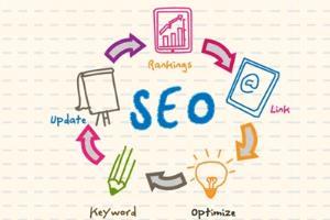 Portfolio for SEO & Social Media Management