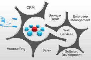 Portfolio for Enterprise Application Development