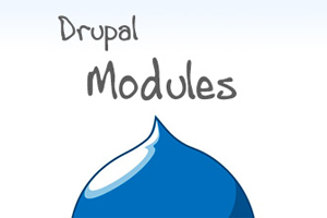Portfolio for Drupal Module Development
