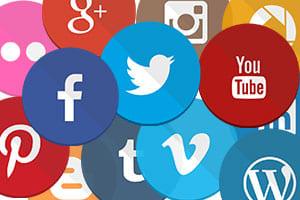 Portfolio for Social API Integration