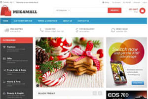 Portfolio for Magento theme & customization  services
