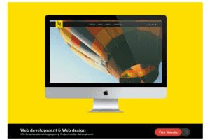 Portfolio for Digital Pro - web development & Design