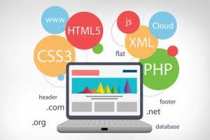 Portfolio for .net Web development