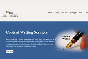 Portfolio for Guest Post at very cheap price