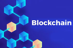 Portfolio for Blockchain