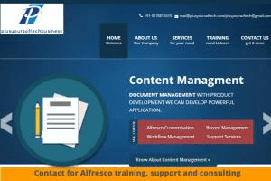 Portfolio for Alfresco and Java/J2EE