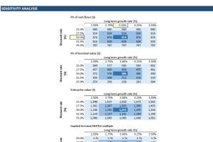 Portfolio for Accounting - Financial Analysis