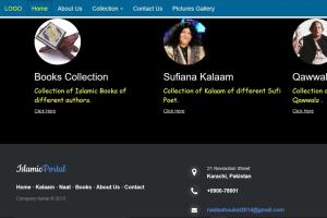 Portfolio for Website design,web development