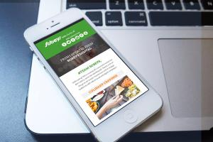 Portfolio for Email Mobile Responsive