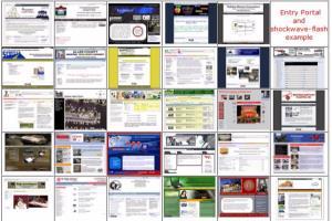 Portfolio for Website Development and Maintenance