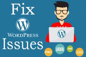 Portfolio for Full Stack WordPress Expert
