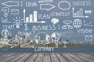 Portfolio for Create a bespoke Business Plan