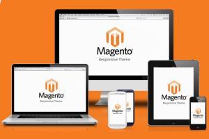 Portfolio for Create magento 2 responsive from PDS