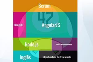 Portfolio for Analyst web developer