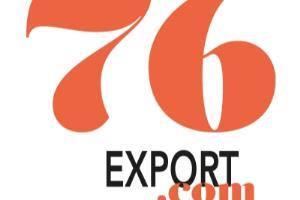 Portfolio for International business (consulting)
